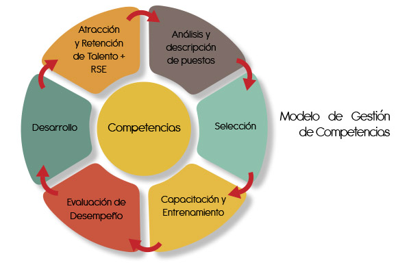 gestioncompetencias3